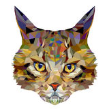 Polygon image of a head of a cat. Stock Images