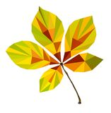 Polygon picture of autumn leaf chestnut. Polygon picture of  autumn leaf chestnut Stock Photo