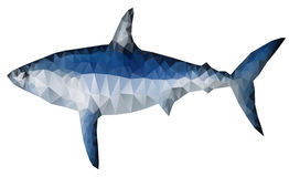 Polygon shark Stock Photos