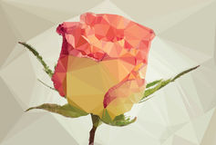Polygon Style Rose Stock Images