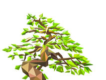Polygon tree on  Stock Image