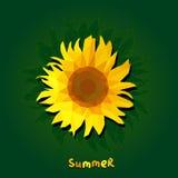 Polygonal ηλίανθος στο πράσινο υπόβαθρο με το καλοκαίρι κειμένων τετράγωνο Στοκ Εικόνες