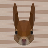 Polygonal abstract geometric triangle squirrel background for us Stock Photo