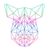 Polygonal abstract gradient colored wild boar silhouette drawn in one continuous line isolated on white background Stock Image