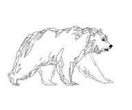 Polygonal bear Royalty Free Stock Images