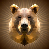 Polygonal Bear Royalty Free Stock Images