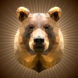 Polygonal björn Royaltyfria Bilder