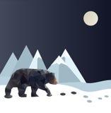 Polygonal björn arkivbild