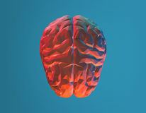 Polygonal brain from top view on turquoise background Royalty Free Stock Images