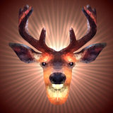Polygonal Deer Royalty Free Stock Photography