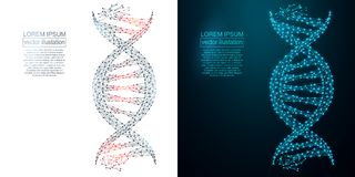 Polygonal DNA abstract image. Low poly wireframe Royalty Free Stock Photos