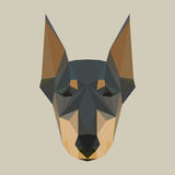 Polygonal doberman Stock Images