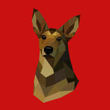 Polygonal dog Royalty Free Stock Photography