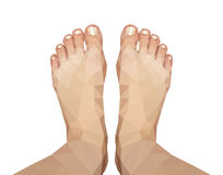 Polygonal foot captured above on white background