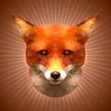 Polygonal Fox Stock Images