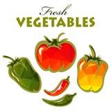 Polygonal fresh vegetables vector illustration