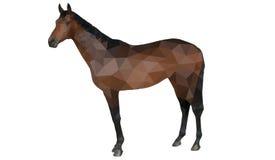 Polygonal häst Royaltyfria Bilder