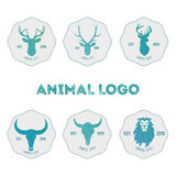 Polygonal hipster logo with heads of deer, buffalo and lion in m. Int color with gradient vector illustration