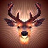 Polygonal hjortar Royaltyfri Fotografi