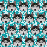 Polygonal husky pattern background Royalty Free Stock Photos