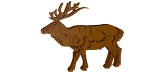 Polygonal illustration 3D Låga poly hjortar Grafisk beståndsdel för designer Royaltyfri Fotografi