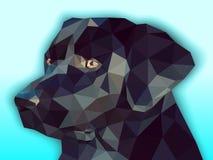 Polygonal Labrador. Black labrador portrait, low poly style.Vector illustration Stock Images