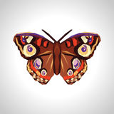 Polygonal and large beautiful butterfly.  Royalty Free Stock Photos