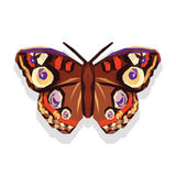Polygonal and large beautiful butterfly on a white background.  Stock Photo