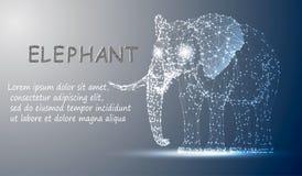 Polygonal linjer abstrakt vektorprövkopiaillustration med utrymmeelefanten på färgnattbakgrunden vektor illustrationer