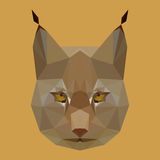 Polygonal lynx background Stock Photo