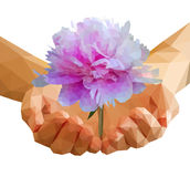 Polygonal peony flower in cupped hands Royalty Free Stock Photos