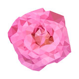 Polygonal pink rose, poly low abstract flower, vector Royalty Free Stock Image