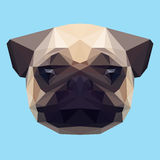 Polygonal pug background Stock Image