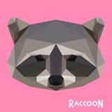 Polygonal raccoon background Stock Photo