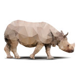 Polygonal rhinoceros Royalty Free Stock Photo