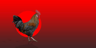 Polygonal Rooster leghorn cock on the red background. Polygonal Rooster cock leghorn on the red background with red circle and bird footprints. Left side and Stock Images