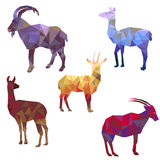 Polygonal silhouettes of animals Stock Photo