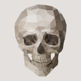 Polygonal  skull. Royalty Free Stock Photos