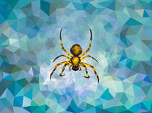 Polygonal spider Stock Photography
