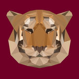 Polygonal tiger background. Polygonal tiger vector abstract background Royalty Free Stock Photography