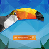 Polygonal toucan background. Decoration element Royalty Free Stock Photography