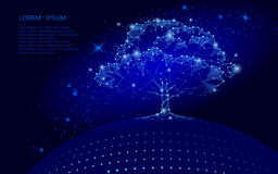Polygonal tree on dark blue sky background. Earth eco globe concept. Connected dot line point art life root  illustration. Polygonal tree on dark blue sky Royalty Free Stock Photo