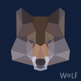 Polygonal wolf background Royalty Free Stock Photography