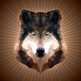 Polygonal Wolf Royalty Free Stock Photos