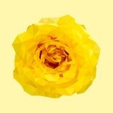Polygonal yellow rose, polygon geometric flower, isolated, vector Stock Image