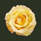 Polygonal yellow rose, polygon geometric flower, isolated vector Royalty Free Stock Photography