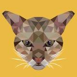 Polygonale Katze, Polygontier, lokalisierte Vektorillustration Lizenzfreies Stockfoto