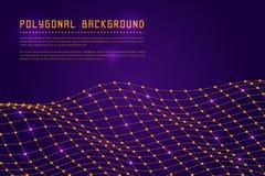 Polygonale Landschaft Wireframe Lizenzfreie Stockfotografie