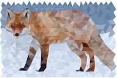 Polygonaler Fox Lizenzfreies Stockbild