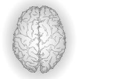 Polygonales menschliches Gehirn Weiße graue Steigung schloss Punktsinnesideenkonzept an Futuristischer Designhintergrundvektor Lizenzfreie Stockfotos